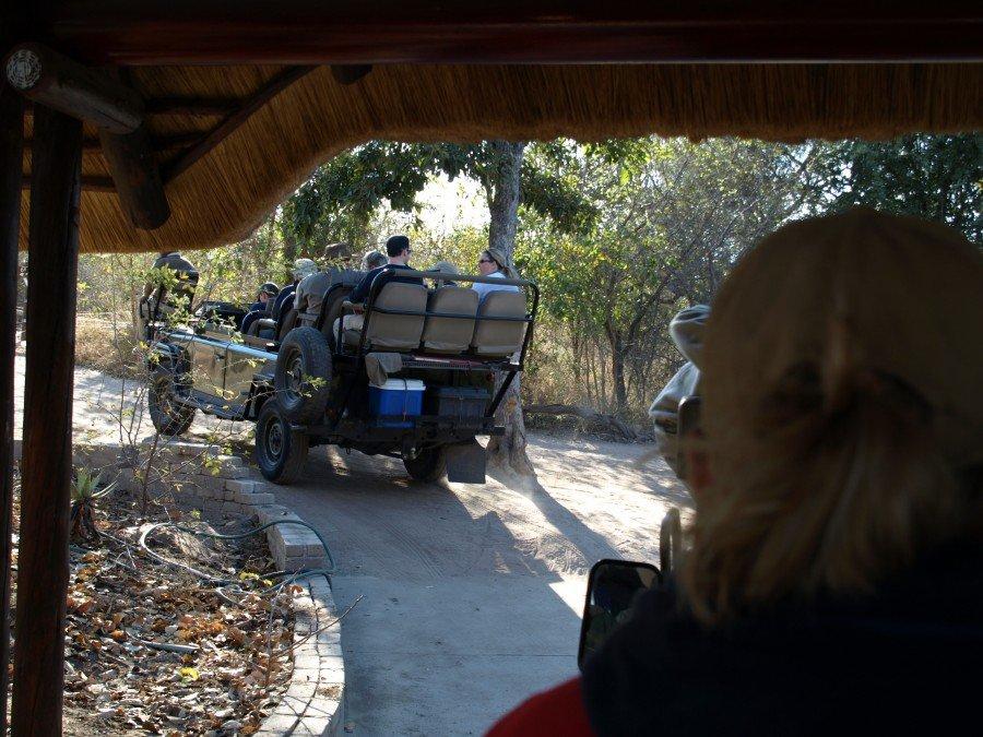 Kruger - Flo' in viaggio