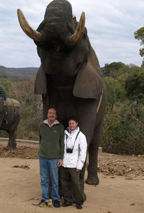 Elephant Whispers - Flo' in viaggio