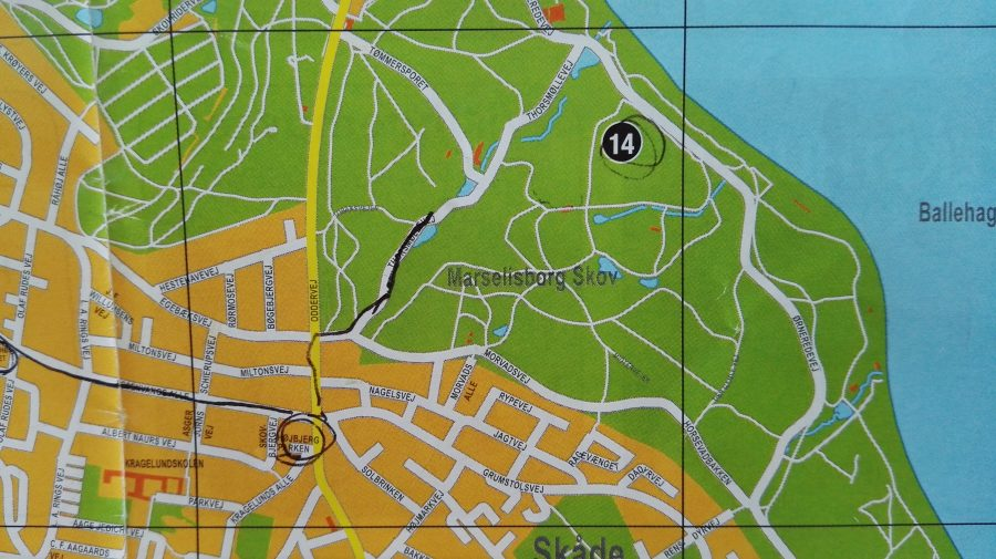 Deer park Aarhus - Flo' in viaggio