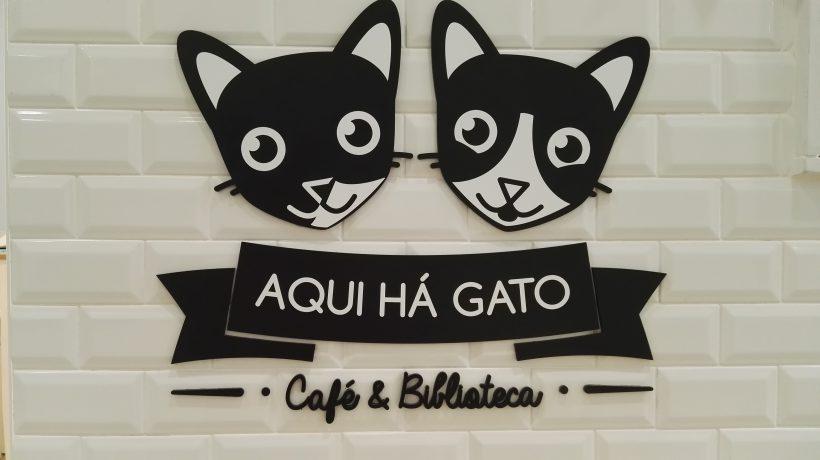 Aqui Hà Gato - Flo' in viaggio