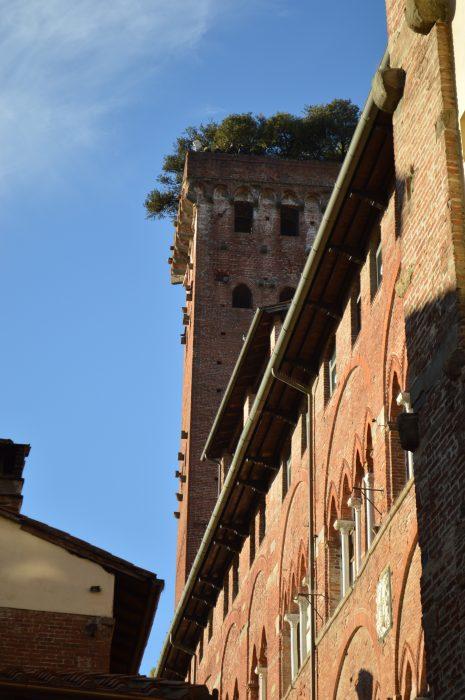 Lucca - Flo' in viaggio