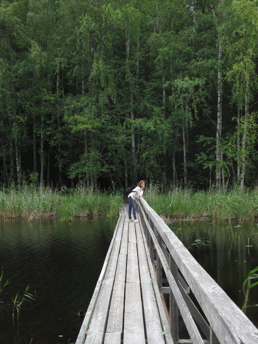 Regione dei laghi- Flo' in viaggio