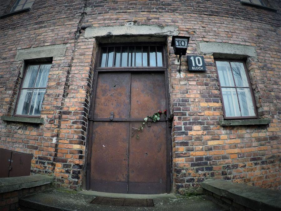 Gita ad Auschwitz - Flo' in viaggio
